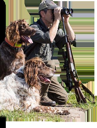 Vos accessoires et colliers pour chiens de chasse